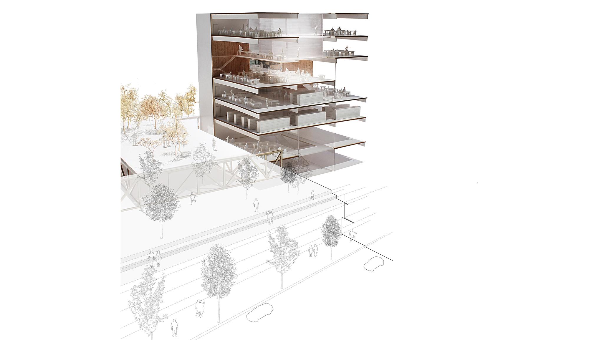 Section - Condorcet Campus - Josep Lluís Mateo